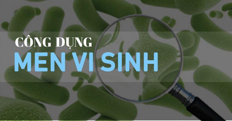 men vi sinh có nhiều công dụng đối với sức khỏe